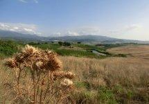 Castel Brunello - aut04