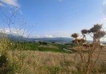 Castel Brunello - aut05